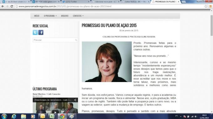 Site Panorama De Negocios Plano De Ação