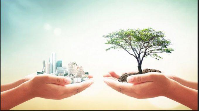 As Empresas Mais Sustentáveis Do Mundo Em 2019