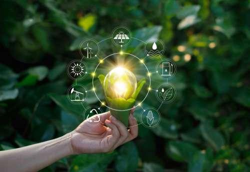 IBE Sustentabilidade: Fazendo A Diferença Em 2019