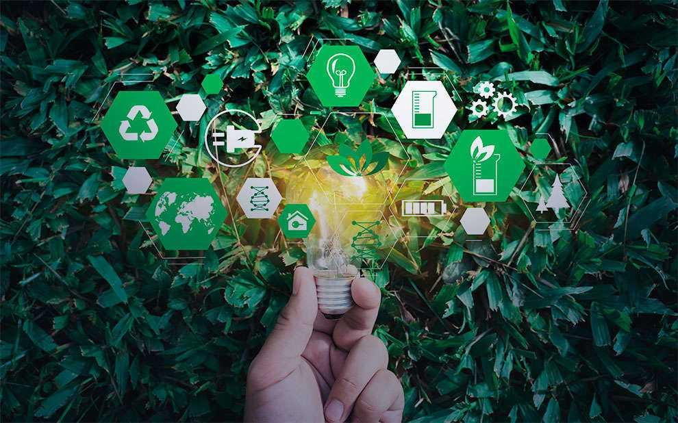 Sustentabilidade: Pesquisa Analisa Iniciativas Das Companhias Negociadas Em Bolsa